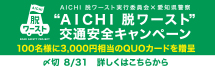 AICHI 脱ワースト ROAD SAFETY PROJECT